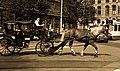 Horse cart in Amsterdam (6073475407).jpg