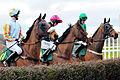 Horse racing (3309224777).jpg