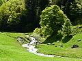 Hospice de France ruisseau Pesson (1).JPG