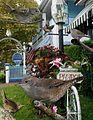 House wren From The Crossley ID Guide Eastern Birds.jpg