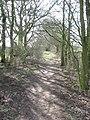 Hunt's Lane heading West to Sandiway - geograph.org.uk - 1773657.jpg