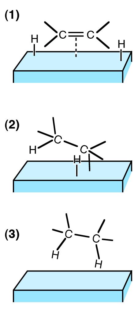 Hydrogenation on catalyst