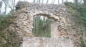 IMG Ruines du Chateau de Montaigu 3.JPG