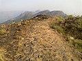 Ilaveezhapoonjira - panoramio (4).jpg