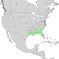 Ilex ambigua range map 1.png