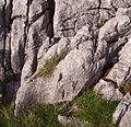 Ingleton mountain top 01.JPG