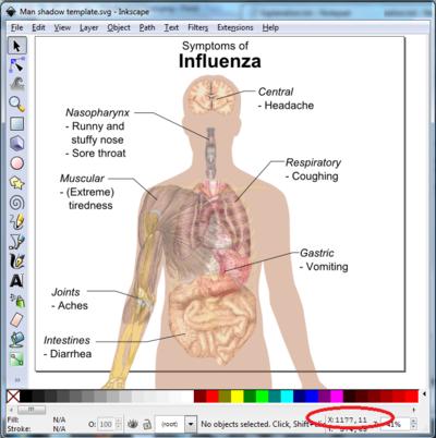 Human body diagrams/Inkscape tutorial - Wikimedia Commons