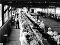 """Interior view of processing room with mainly female workers in """"mob hats"""" sitting and processing fish at a canning line, South (INDOCC 555).jpg"""