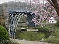 Ironbridge, the Iron Bridge - geograph.org.uk - 1239649.jpg