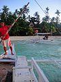 Island hopping tour, Bohol.jpg