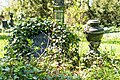 Ivy covered tombstone (24269109294).jpg