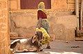 Jaisalmer (Rajastão), RTW 2012 (8404934133).jpg