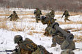 Japan Ground Self Defense Force soldiers fight alongside Marines of Combat Assault Battalion, 3rd Marine Division in simulated combat using laser detection gear March 7 at the Yausubetsu Maneuver Area, Hokkaido, Japan..jpg