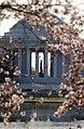 Jefferson Memorial through cherry trees - 2013-04-09 (8635278887).jpg