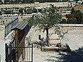Jerusalem Mount of Olives P1060054.JPG