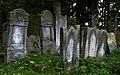 Jewish cemetery Szydlowiec IMGP7600.jpg