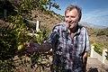 John's first pomegranate (20542211043).jpg