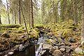 Jyväskylä Ankeriasjärvi - stream.jpg