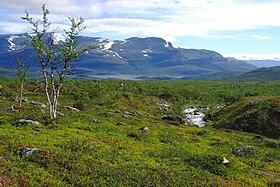 Image illustrative de l'article Région de Laponie