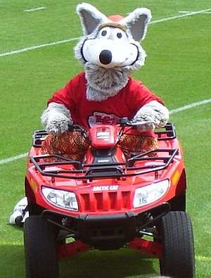 K. C. Wolf - K. C. Wolf at Arrowhead Stadium