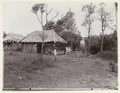 KITLV 4154 - Kassian Céphas - Place where people descend to reach the birds nest caves at Rongkap - Around 1895.tif