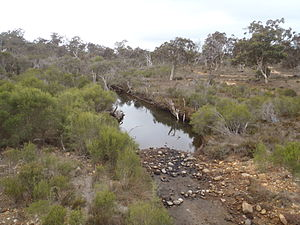 Kalgan River - The River near Kamballup between the Porongurups and the Stirling Range