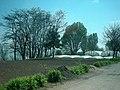 Kam'yans'ko-Dniprovs'kyi district, Zaporiz'ka oblast, Ukraine - panoramio (16).jpg