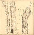 Kartblad nr X- Vei-kaart over den trondhjemske Kongevei fra Christiania til Røraas gjennom Eidsvold; Rommedal; Levthen og Østerdalen, , 1819.jpg