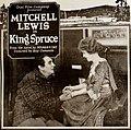 King Spruce (1920) - Ad 7.jpg