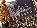 Kiwix offline hackathon 2013 first day.jpeg
