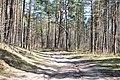 Kleistu mežs, Rīga, Latvia - panoramio (3).jpg