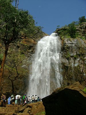 Namakkal district - Water falls in Kolli Hills