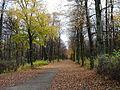 Krásný Dvůr, park 12.jpg