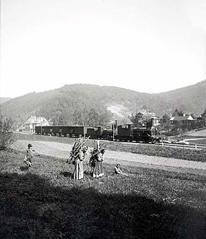 Imperial Royal Privileged Austrian State Railway Company - A train with a StEG I at Adamov on the Brünn–Böhm line. Trübau (around 1893)