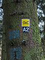 Krenkeltal Rothaarsteig in Sauerland. Markering wandelroute 02.jpg