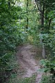 Kronoskogens naturreservat.jpg