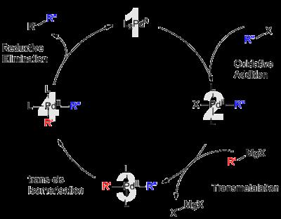 palladium catalysis the suzuki reaction A review on palladium catalyzed coupling reactions  palladium catalyst used in suzuki coupling   presence of a palladium catalyst the reaction.