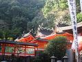 Kumanonachitaisha8473.jpg