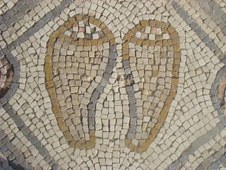 Luffa aegyptiaca - Luffa in Kursi mosaic, Golan Heights