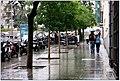 La Carrera de San Jerónimo mojada (9723603817).jpg