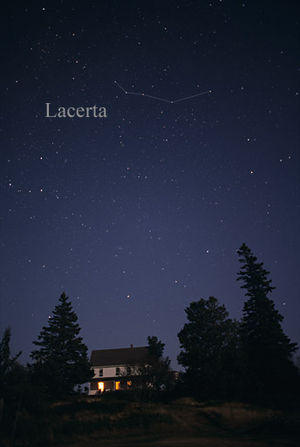 Lacerta - The constellation Lacerta as it can be seen by the naked eye.