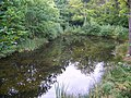 Lake, Stover Country Park - geograph.org.uk - 947791.jpg