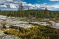 Landscape towards Vasatunturi from Kivitunturi, Savukoski, Lapland, Finland, 2021 June.jpg