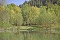 Landschaftsschutzgebiet Gültlinger und Holzbronner Heiden, Kennung 2.35.045, Gültlinger See (Berfeldinger Stauweiher) 01.jpg