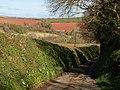 Lane from Bickleigh Farm - geograph.org.uk - 1242889.jpg