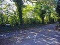 Lane junction - geograph.org.uk - 273861.jpg