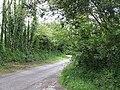 Lane near Kendle Farm - geograph.org.uk - 455460.jpg