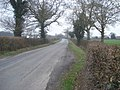 Lane to Coddington Cross - geograph.org.uk - 636087.jpg
