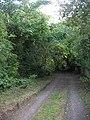 Lane to Teme's Green - geograph.org.uk - 839697.jpg