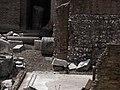 Largo di Torre Argentina cat 8.jpg